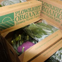 Picture of Veg Boxes