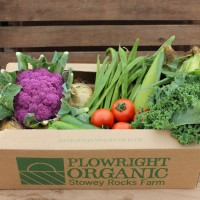 Picture of Extra large veg box