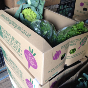 New plowright organic veg box design, Bristol, Weston super Mare